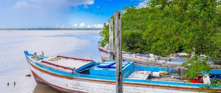 Roxanne Blog Suriname
